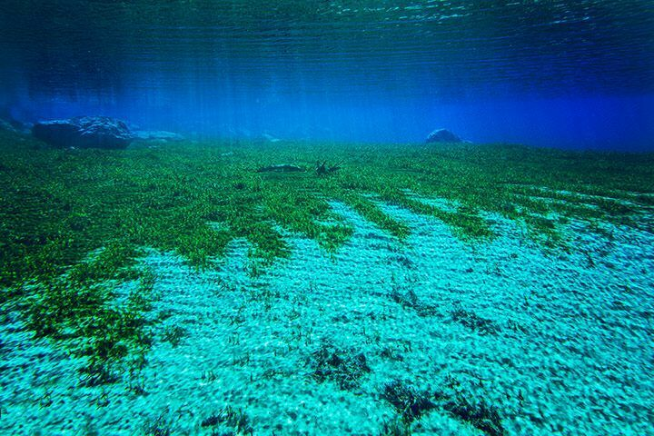 Imgae of the Blue Lake
