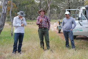 Sayed Iftekhar, on the right, listens to ecologist Geoff Kay in a grassy woodland (a threatened ecosystem). Sayed has investigated how NRM managers are often influenced by unacknowledged biases in their decision making.